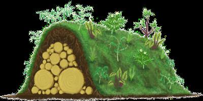 raised garden beds: hugelkultur instead of irrigation